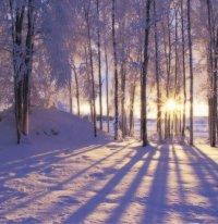 Winter Solstice Online 2020 Event